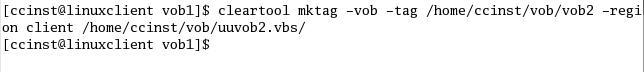 Fig2.3 在当前客户端所在Region上创建VOB tag
