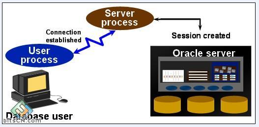 Oracle体系结构 内存结构和进程结构 体系架构