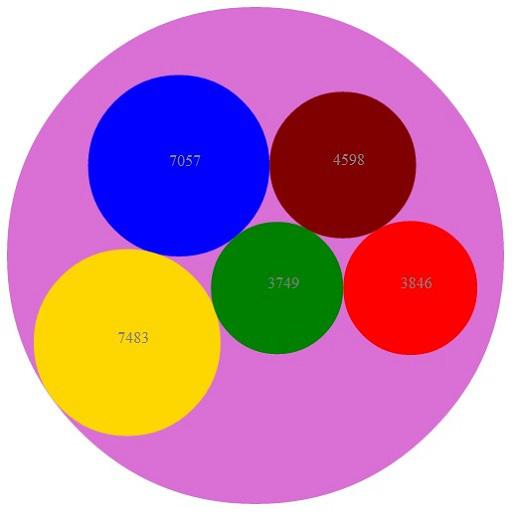 了解用于绘制各种排列的组件的图形计算 在这个由两部分组成的文章系列中,将学习如何结合使用可缩放矢量图形 (SVG) 和开源 D3 JavaScript 库创建数据可视化。形状、颜色和布局可能对从业务角度理解海量数据具有很大帮助。本文将演示使用 D3 的和您自己的计算结果,通过在画布上排列图形组件来表示数据的各种方式。 您将学习如何使用 D3 强大的图形计算在 SVG 画布上放置组件,以及如何将自己的图形操作与 D3 的布局相结合。我还将探讨如何使用 JavaScript 对象表示法 (JSON) 作为一种